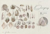 Dried Palms Flowers And Leaves Watercolor Set J9gwzpg